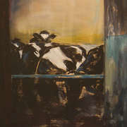 O'Shea's Cows