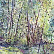Art 'Woods in May'